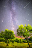 Green trees Milky way night sky falling stars Royalty Free Stock Photography