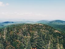Green Trees on Mountain Areal Shot Royalty Free Stock Photo