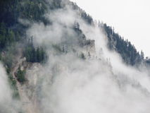Green Trees on Mountain Covered With Fog Royalty Free Stock Photography