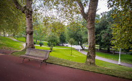 Green trees in park, Bilbao Royalty Free Stock Photography