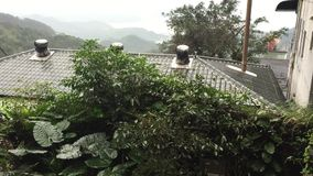 Green trees at the park in Jiufen, Taiwan stock video footage