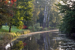 Green trees and pond in the park in autumn Stock Photo
