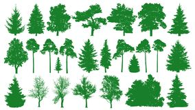 Green trees set. White background. Silhouette of a coniferous forest. Fir-tree, fir, pine, birch, oak, bush, branch.