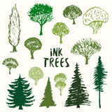 Green trees silhouette vector collection. Hand drawn sketches isolated set. Stock Image
