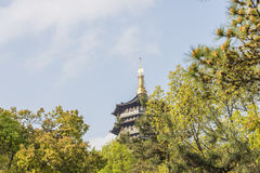 Green trees and Leifeng pagoda stock photos