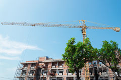 Green trees stand in front of Crane and building construction site. Against blue sky Stock Photos