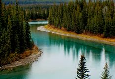 Green Trees Surrounding Lake Stock Photo
