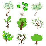 Green trees on a white background Stock Photo