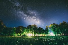 Green Trees Woods In Park Under Night Starry Sky In Violet Color. Landscape With Glowing Milky Way Stars Over Meadow At