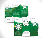 Green Tri Fold Brochure Design. Vector illustration Stock Images