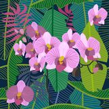 Green tropical background with blooming orchids and palm leaves. Seamless botanical pattern with aloha motifs. Trendy design for textile, cards and invitations Royalty Free Stock Photography
