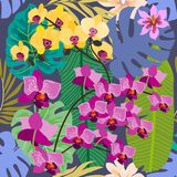 Green tropical background with blooming yellow and purple orchids, ferns and palm leaves. Seamless botanical pattern with aloha motifs. Trendy design for Royalty Free Stock Photography