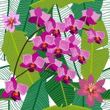 Green tropical background with blooming yellow and purple orchids, ferns and palm leaves. Seamless botanical pattern with aloha motifs. Trendy design for Stock Image