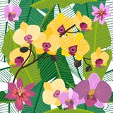 Green tropical background with blooming yellow and purple orchids and palm leaves. . Seamless botanical pattern with aloha motifs. Trendy design for textile Stock Photography
