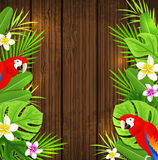 Green tropical leaves and red parrots Royalty Free Stock Image
