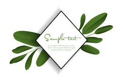 Green tropical leaves vector illustration