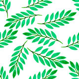 Green tropical leaves watercolor seamless pattern. Vector texture with hand paint Stock Photos