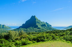 Green tropical Moorea Stock Photo