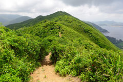 Green Tropical mountains and hiking route on the Dragon's Back trail near Hong Kong Royalty Free Stock Images