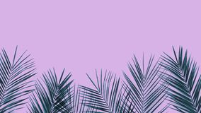 Frame of tropical leaves palm tree on ultra violet duotone background. Green tropical palm leaves frame on ultra violet duotone background. Trendy design wih stock images