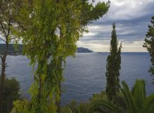 Green tropical vegetation palm and trees with view on Paleokastritsa bay, summer cloudy sky, Corfu, Kerkyra, Greece royalty free stock photography