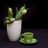 Green tulips and coffee royalty free stock images