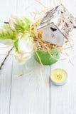 Green tulips, wooden heart shape bird house Royalty Free Stock Image