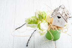 Green tulips, wooden heart shape bird house royalty free stock image