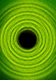 Green tunnel. With black hole Stock Photo