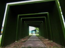 Green tunnel like way to paradise Royalty Free Stock Photo