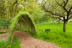 Green tunnel. Path thru live green tunnel made from plants Stock Images