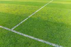 Green turf for football Stock Image