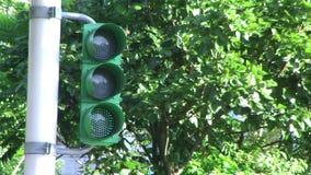 Green turning yellow turning red traffic light In Taipei, Taiwan. Clear digital countdown, green man running fast, good traffic signals stock video