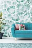 Green and turquoise living room. Cushions on turquoise sofa against green wallpaper in living room interior with ficus Stock Photo