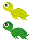 Green turtle Stock Images