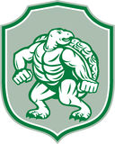 Green Turtle Fighter Mascot Shield Retro. Illustration of a green turtle in fighting stance looking to the side set inside shield crest on isolated background Stock Images