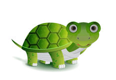 Green turtle illustration Royalty Free Stock Images