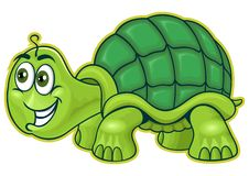 Green_ turtle Stock Photography