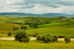 Green Tuscany hills Royalty Free Stock Photos