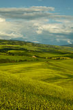 Green Tuscany hills Stock Photo