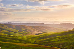 Green Tuscany hills Royalty Free Stock Images