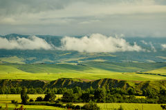 Green Tuscany hills Royalty Free Stock Image