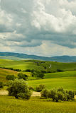 Green Tuscany hills Royalty Free Stock Photo