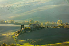 Green Tuscany landscape at morning time with birds Royalty Free Stock Photography
