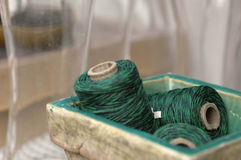 green tvinnar arkivfoton