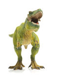 Green tyrannosaurus Royalty Free Stock Photos