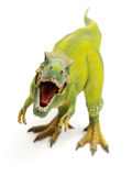 Green tyrannosaurus Royalty Free Stock Images