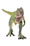 Green tyrannosaurus. On white background Stock Photography