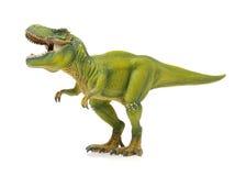 Green tyrannosaurus Royalty Free Stock Image
