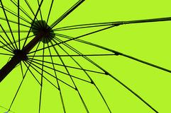 Green umbrella. Stock Photography